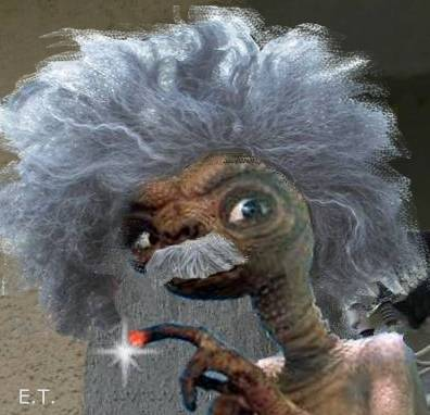 #*X {#§* Einstein = I am Einstein